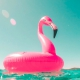 Opblaasbare flamingo drijft in een helder blauwe zee.