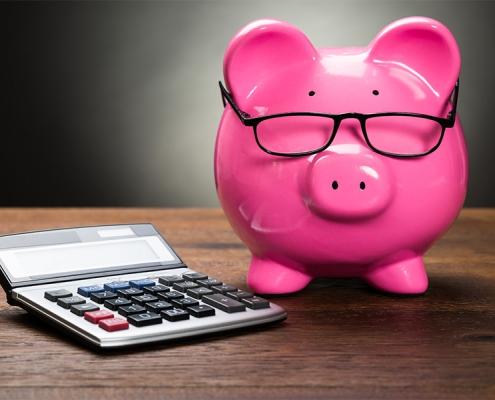 Roze spaarvarken met een bril op en een rekenmachine voor zijn neus.
